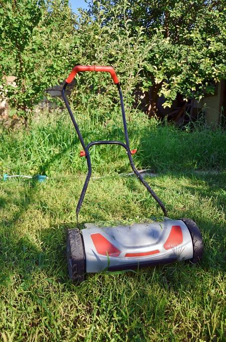 Hand lawnmower in garden