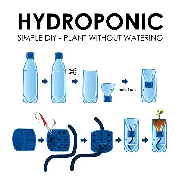 A vector illustration of diagram of a hydroponics setup